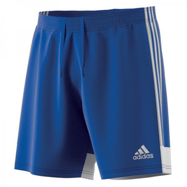 adidas Short TASTIGO 19 bold blue/white | 116